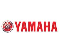Yamaha YFM125 Raptor kettingen en tandwielen